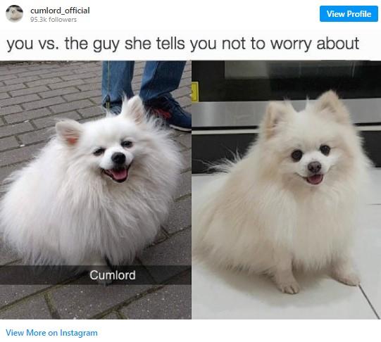 Cumlord's Instagram
